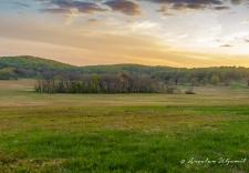 Sunset on the field